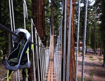 suspended bridge to walk on, bridge suspended high in the trees