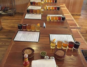 several beers set up on a table for grading