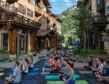 people doing yoga pose