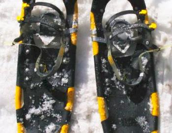 pair of yellow snowshoes