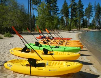 kayaks on the beach with paddles