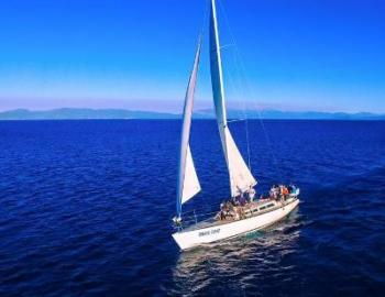 sail boat cruising in tahoe