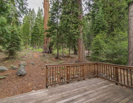 back deck overlooking forest setting